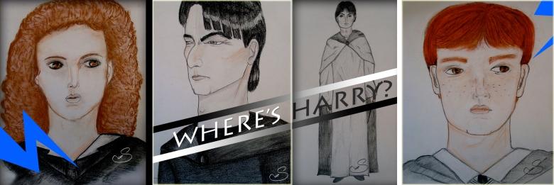 Where's Harry By Shilpa Tripathi